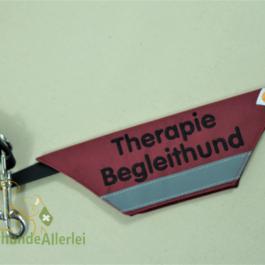 Therapiebegleithund & Reflektorstreifen