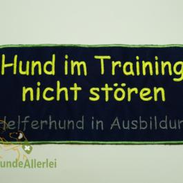 Hund im Training // Ausbildung