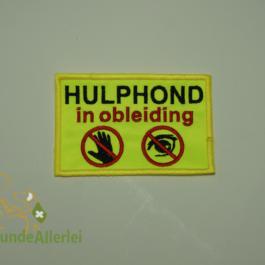 Niederlande: Hulphond in opleiding